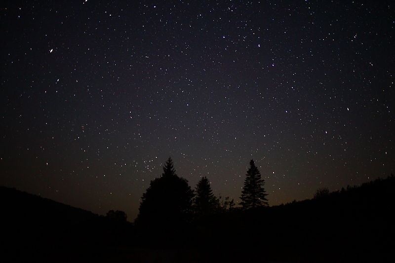800px-Night-sky-stars-forest-trees_-_West_Virginia_-_ForestWander
